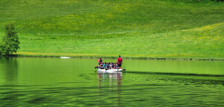 """Dragon Boat Challenge"", Client: Mittelstandskreis, Location: Putterersee Aigen i.E."
